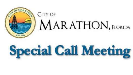February 3, 2015 Special Call Council Meeting